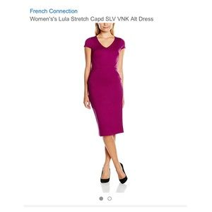 NWT French Connection Lula Stretch Capped Dress